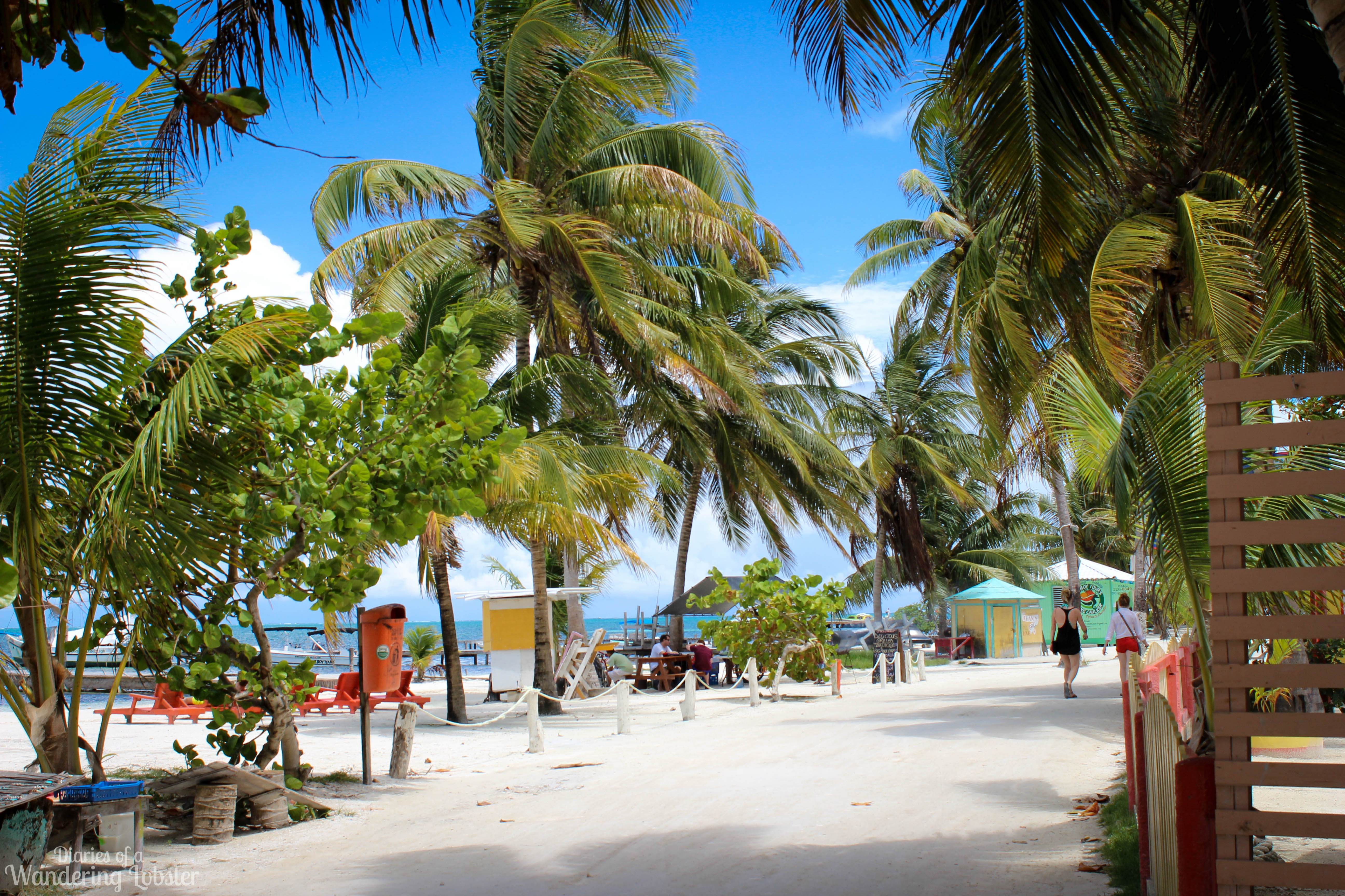 caye caulker map with Day 6 Island Hopping From San Pedro To Caye Caulker Belize on 184qV Belize Barrier Reef Belize furthermore DivesitesBIG furthermore 100021 additionally Caye Caulker Belize further South Water Caye.