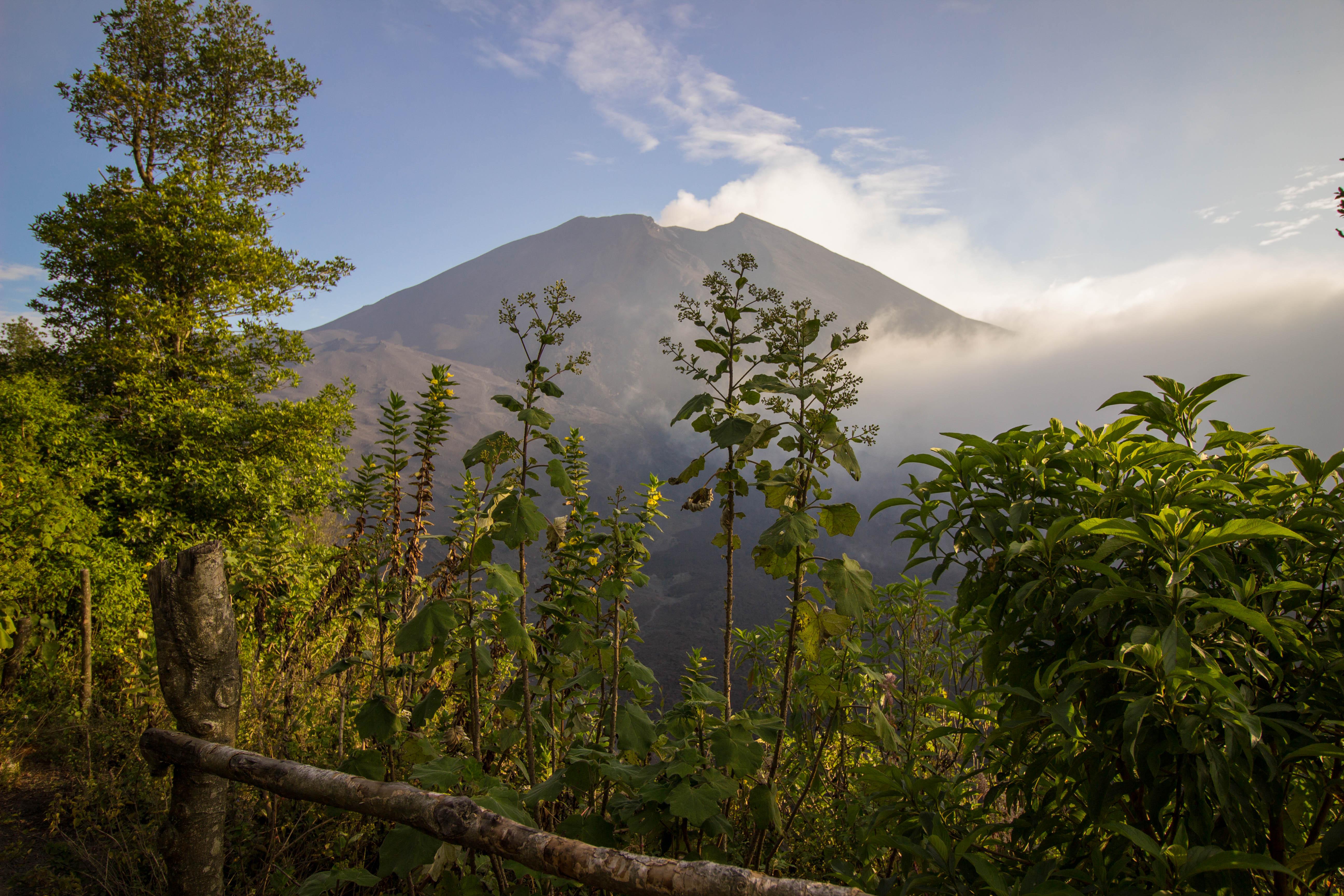 Hiking Pacaya Volcano in Antigua, Guatemala - Diaries of a ...